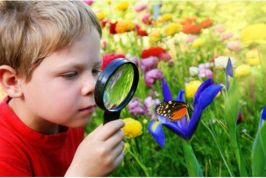 Трудовое воспитание дошкольников в соответствии с ФГОС: цель, задачи, планирование трудового воспитания в соответствии с ФГОС, проблема трудового воспитания дошкольников