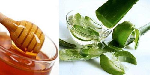 алое рецепты приготовления лекарства с медом от кашля