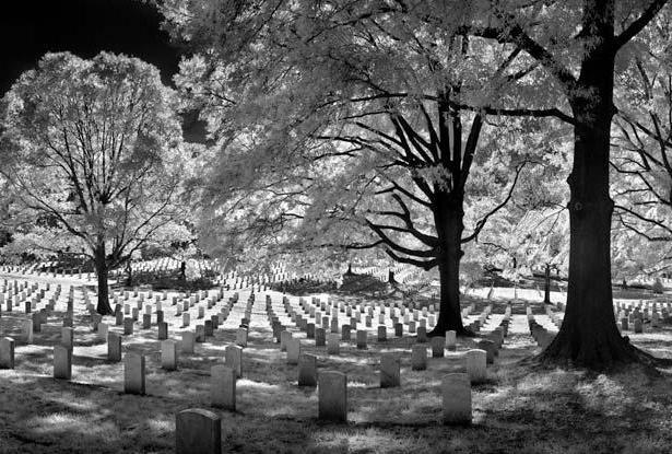 Спросим сонник: ходить во сне по кладбищу что означает?