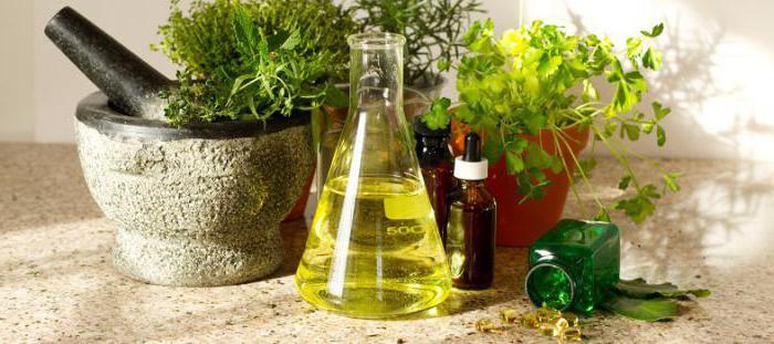 травяные сборы для лечения цистита