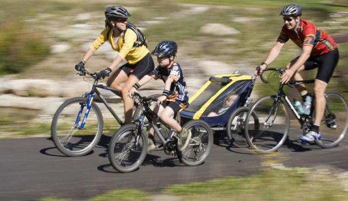 Езда на велосипеде: польза и вред для здоровья