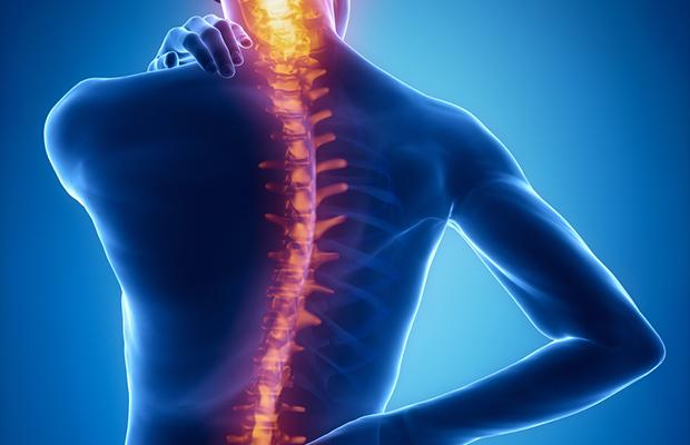 комплекс упражнений для спины при сколиозе