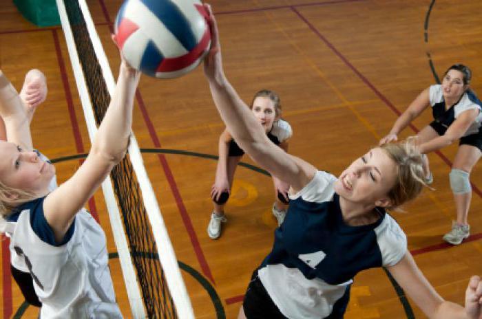 секция волейбола для взрослых в москве