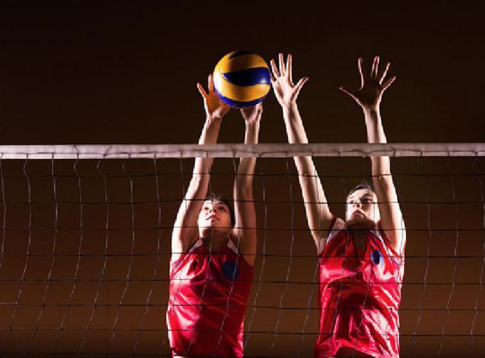 секция волейбола для девочек в москве