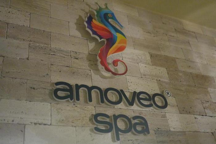 Салон красоты Amoveo SPA, СПб: отзывы, услуги, адрес в Санкт-Петербурге