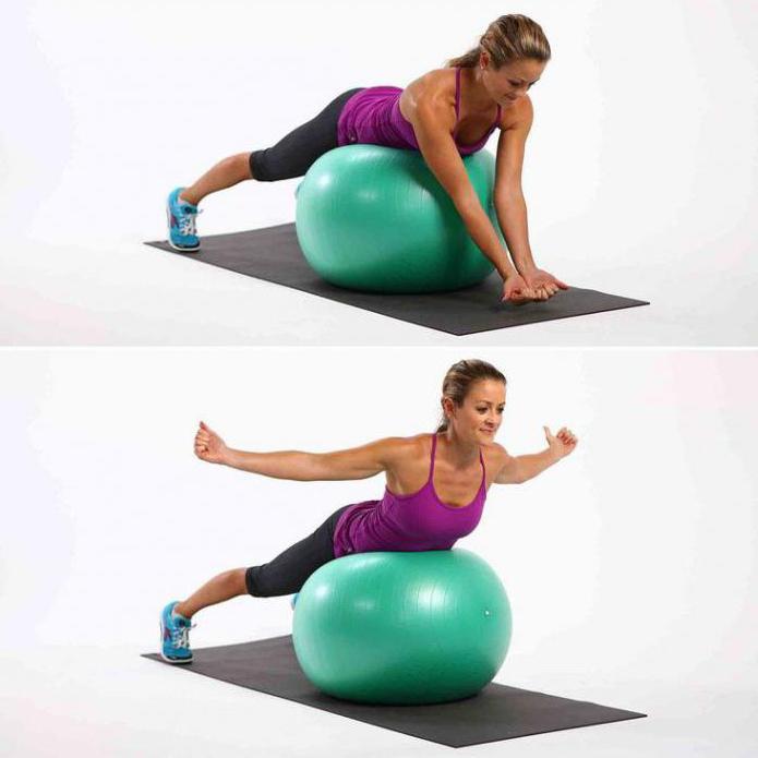 упражнения для укрепления мышц спины в домашних условиях