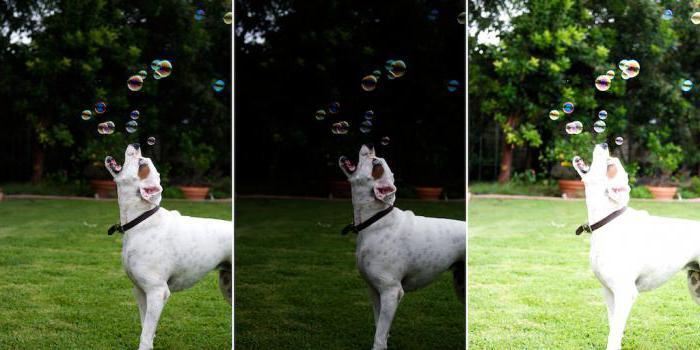 Экспонирование - это простейшая физика или магия создания шедевра?