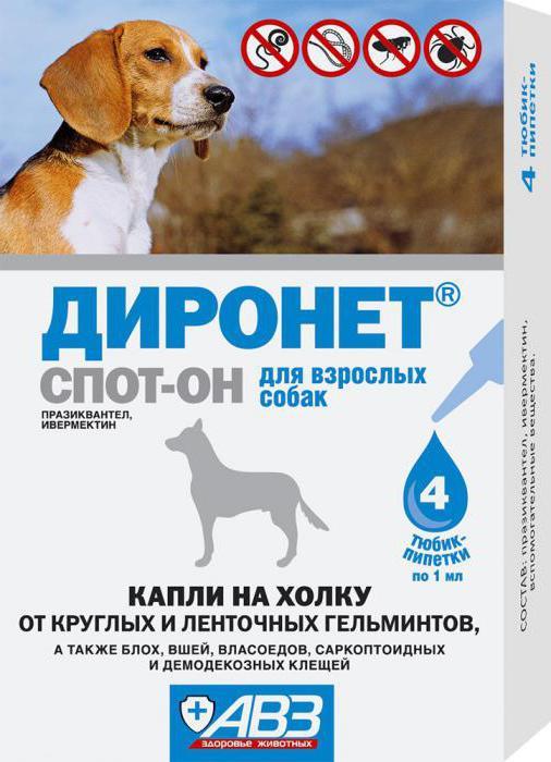 препарат от паразитов для кошек