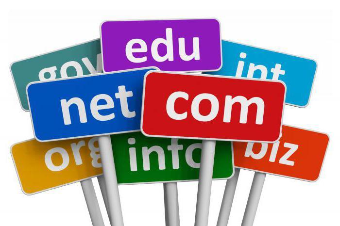 информатика доменное имя