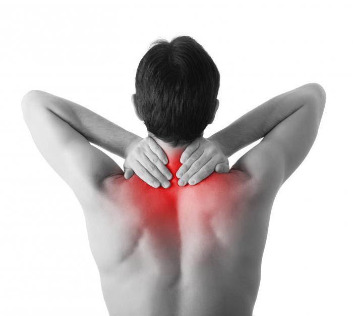 Почему болит живот, тошнит и одновременно болит