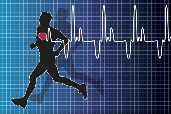 будет пульс при спортивной ходьбе термобелья