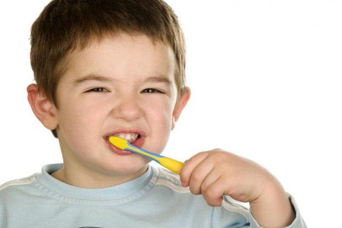 стоматолог гигиентист