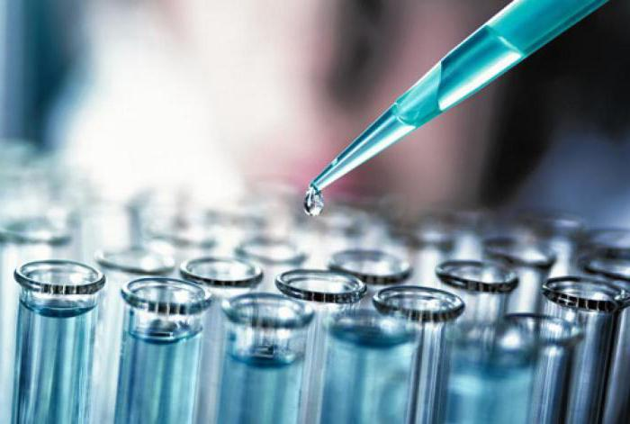 Сколько делается иммуноблот 7