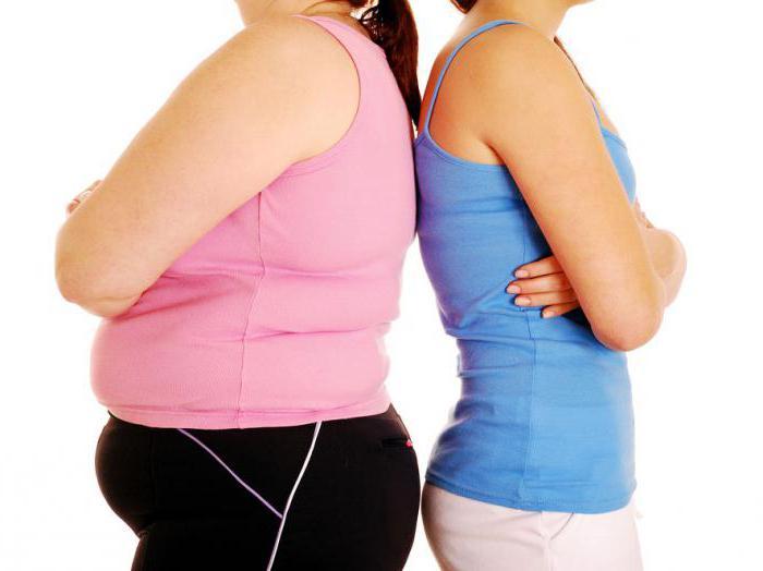 счетчик калорий для похудения программа