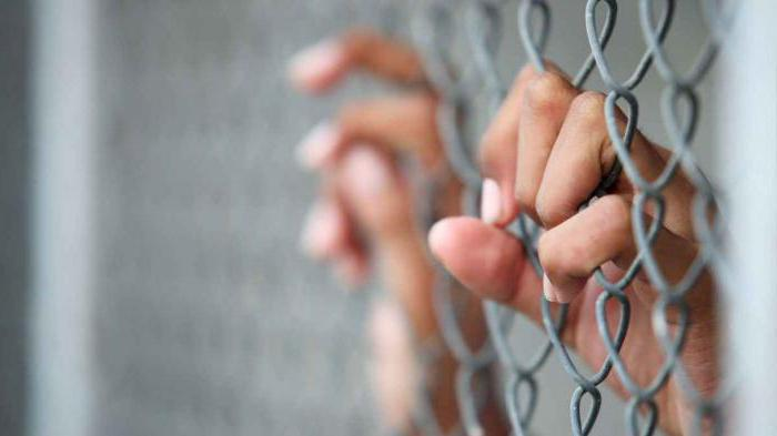 законные представители несовершеннолетнего подозреваемого обвиняемого