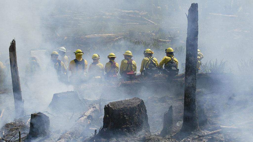 пожарная часть в сша