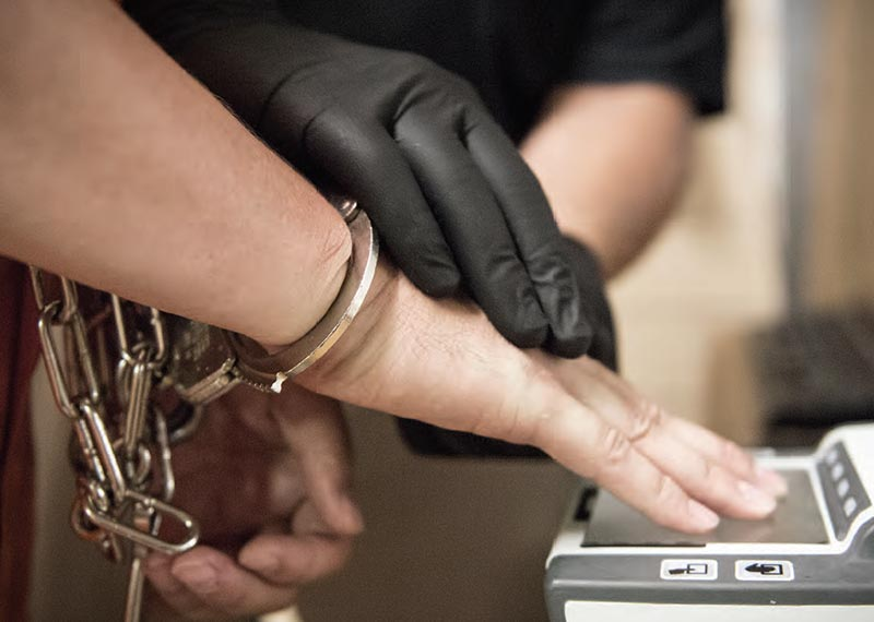 криминологическая характеристика обзор