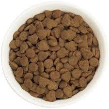 сухие беззерновые корма кошек