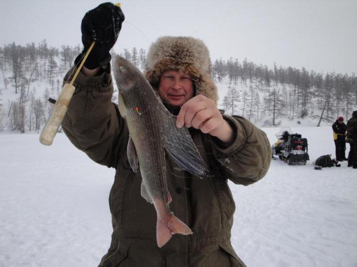 особенности рыбалки в зимний период