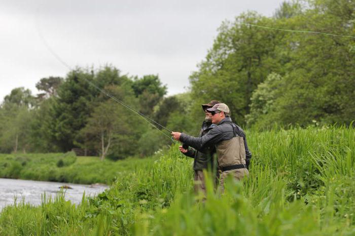 В ростове на дону рыбалка