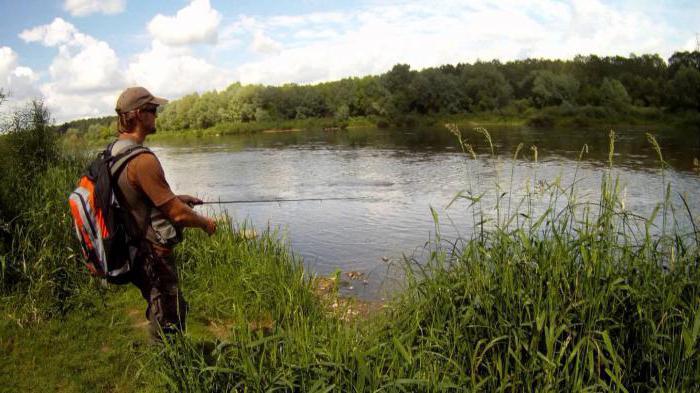 зимняя рыбалка в ростове