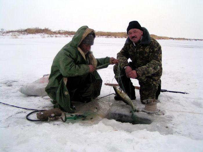 платная рыбалка в ростове