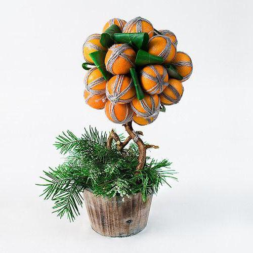 мандариновое дерево своими руками фото