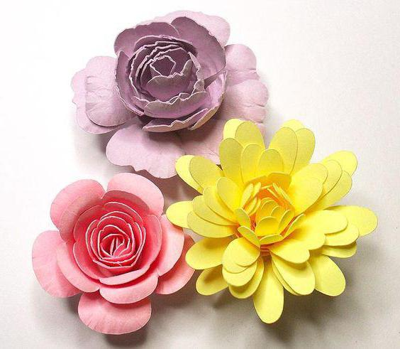 скрапбукинг цветы из бумаги своими руками шаблоны