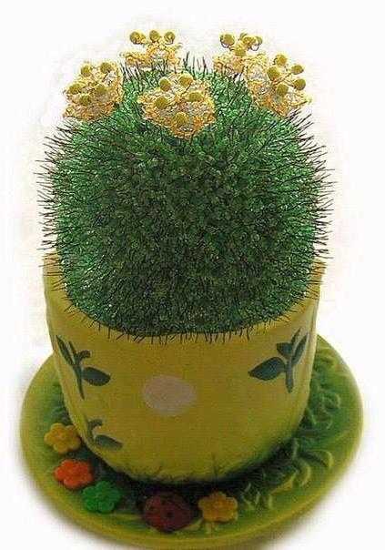 кактус из бисера цветок схема