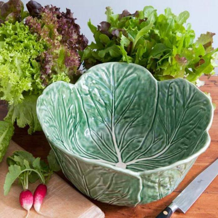 листья салата польза и вред полезные свойства