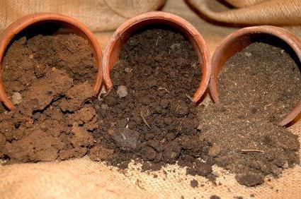 почва суглинистая