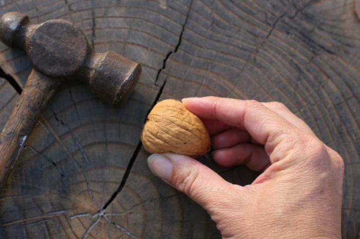 как легко расколоть грецкий орех