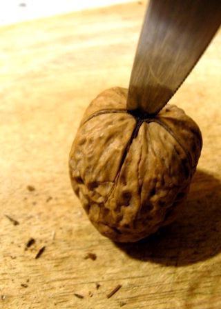 как расколоть грецкий орех не повредив ядро