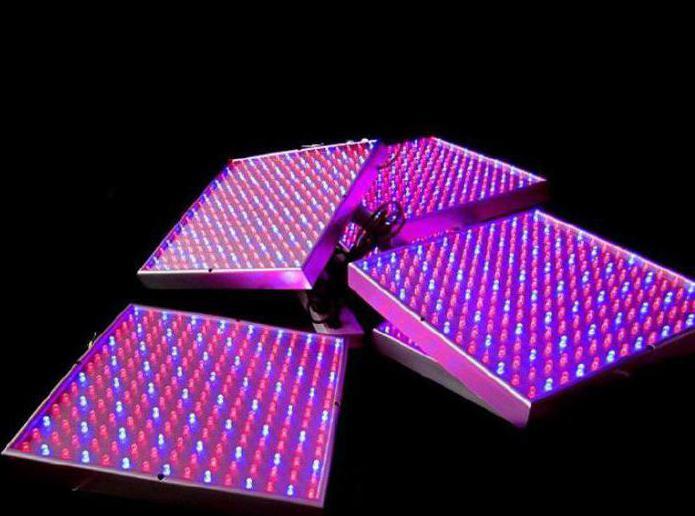 led светильники для растений