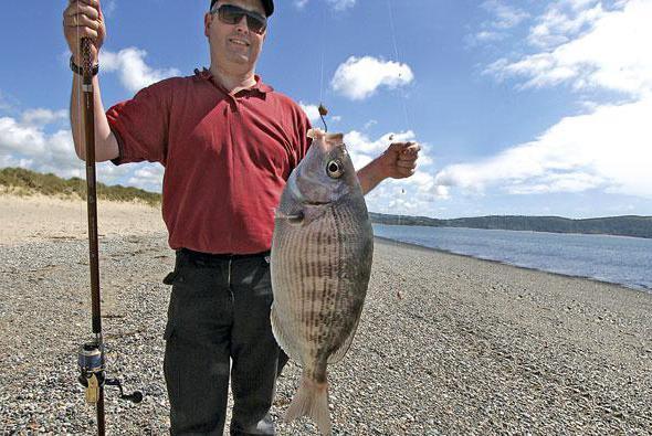 ловить рыбу в геленджике
