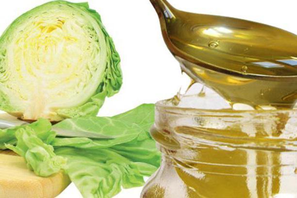Капустный лист с медом от кашля: рецепт, показания и противопоказания