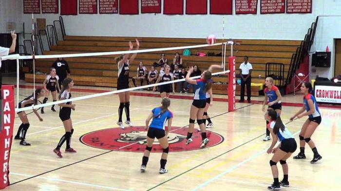 основные правила волейбола кратко