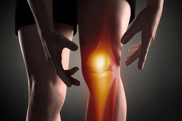 краткая анатомия коленного сустава