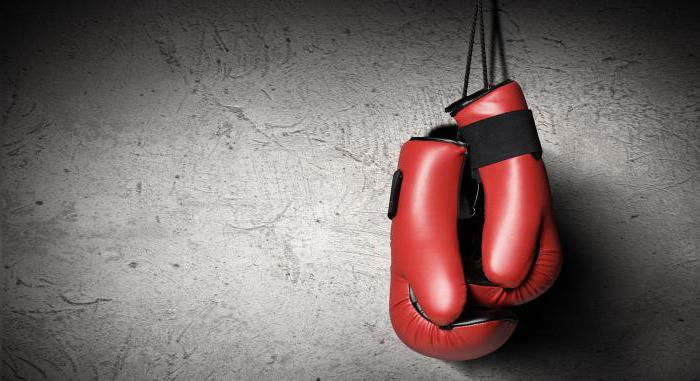 фото про бокс