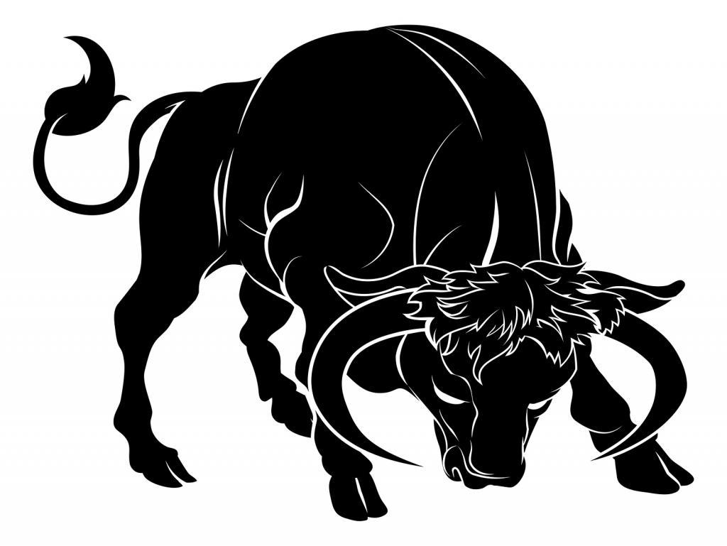 Taurus zodiac sign man