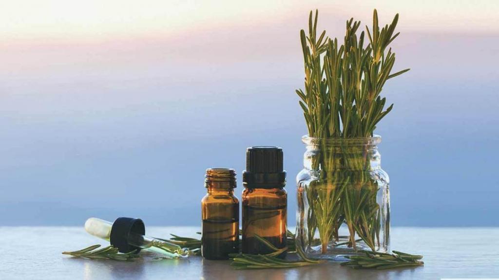 Масло жожоба для чего можно использовать? Свойства и применение масла жожоба в домашней косметологии