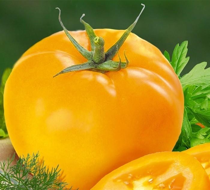 Желтый помидор картинка
