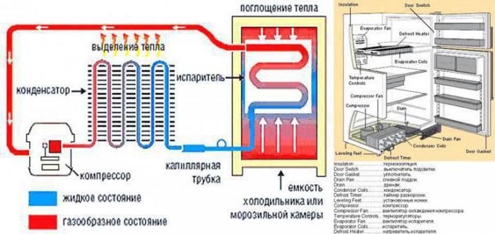неисправности терморегулятора холодильника