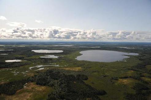 тазовский полуостров