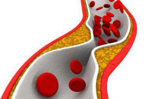 Возрастные норм холестерина крови