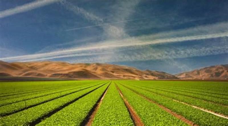 принципы оборота земель сельскохозяйственного назначения