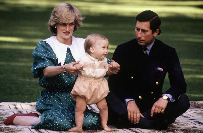 a biography of princess diana the wife of prince charles