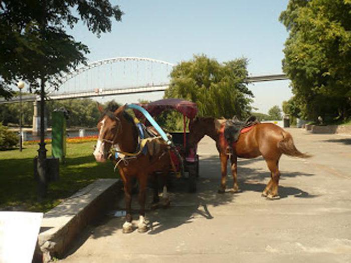 парк луначарского в гомеле аттракционы