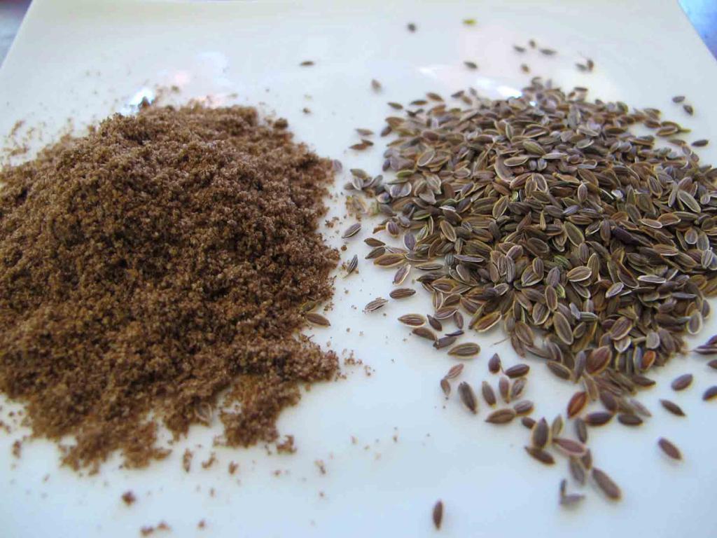 Семена укропа для лечения недержания мочи