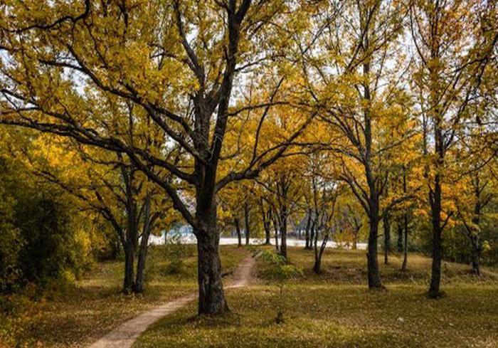 Дзержинск: история, достопримечательности